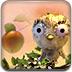 小鸟试飞吃水果