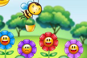 小蜜蜂采蜜汁图片
