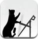 小猫跳椅子