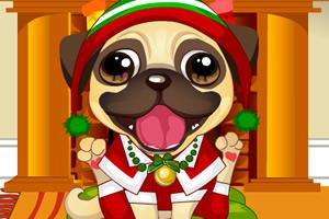 小狗狗过圣诞