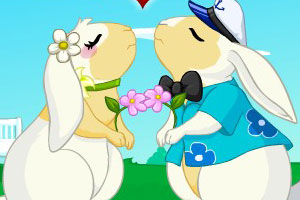 兔兔的情人节